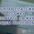 edinaya-platezhka-po-zhku